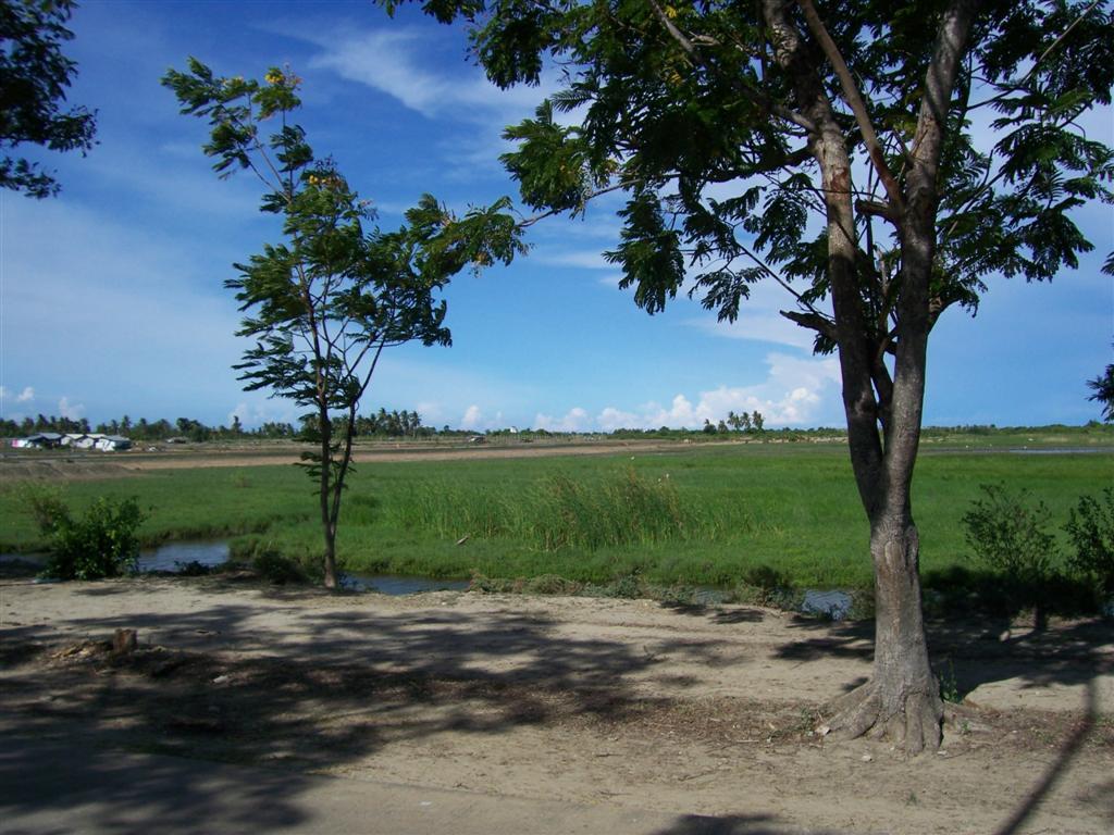 ขายที่ดิน 22 ไร่ หาดเจ้าสำราญ เหมาะจัดสรรและทำเกษตร จังหวัดเพชรบุรี