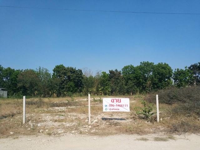 ขายที่ดิน ย่านพุทธมณฑลสาย2 ขนาด711 ตรว