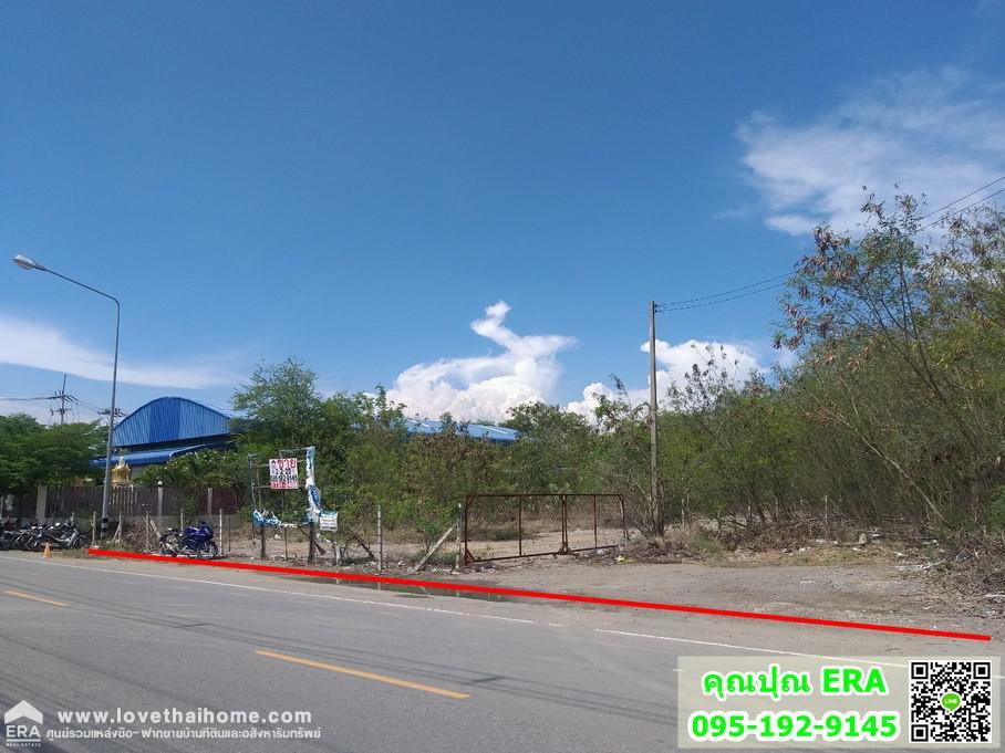 ภาพขายที่ดินถมแล้วถนนบางนา-ตราด กม.42 ทางไปชลบุรี ต.บางวัว อ.บางปะกง จ.ฉะเชิงเทรา