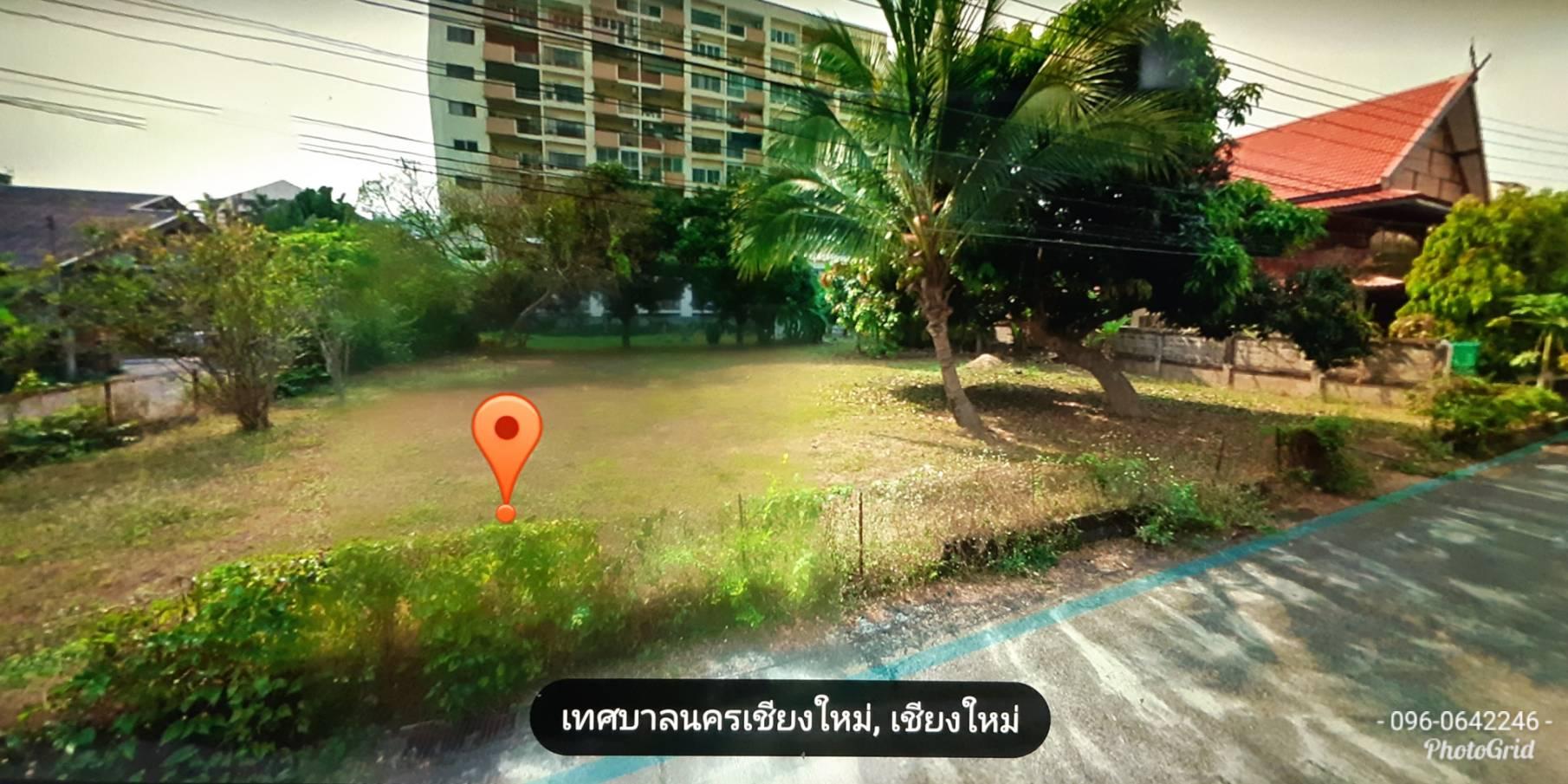 ภาพขายที่ดิน แปลงสวย 294 ตรว.หลัง ม.เชียงใหม่  ถนนห้วยแก้ว ซ.3 คลองชลประทาน ใกล้ รร.ภูคำ ,วัดประทานพร