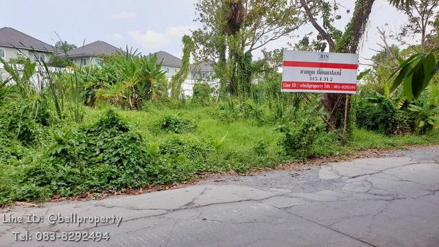 ภาพขายที่ดินเปล่า 315.4 ตร.ว ต.บางรักน้อย จ.นนทบุรี