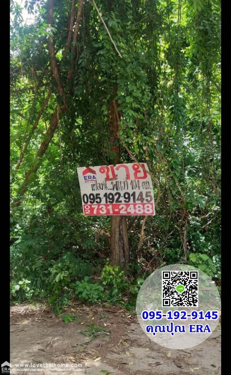 ภาพขายที่ดินบางแสน สาย2 ซอย16 (ซอยแสงธรรม) ชลบุรี พื้นที่104ตรว.