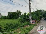 ภาพขายที่ดิน ม.ฉัตรหลวง ไทรน้อย นนทบุรี ใกล้การไฟฟ้าย่อย EGATไทรน้อย