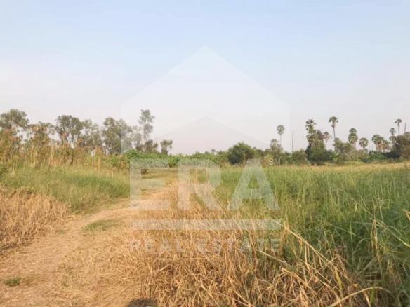 ภาพERA OP255 ที่ดินเปล่า 22-3-87.6 ไร่ อ.เมืองปทุมธานี