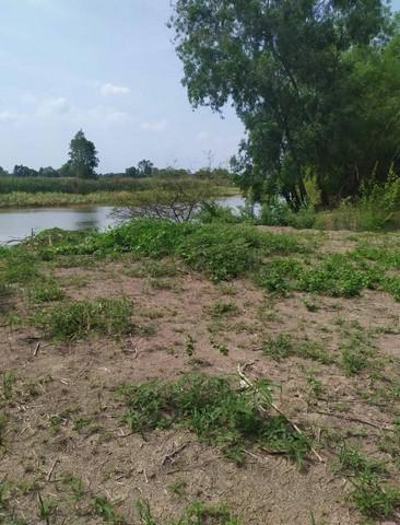 ขาย ที่ดิน 1-2-87 ไร่ ติดแม่น้ำนครนายก องครักษ์