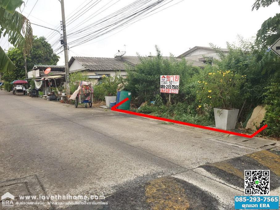 ภาพขายที่ดินรังสิต-นครนายก16 คลองหนึ่ง ธัญบุรี ปทุมธานี พื้นที่50ตรว ถมแล้ว