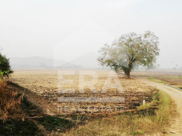 ภาพ577271 ที่ดิน 41-1-0 ไร่ อ.สองพี่น้อง จ.สุพรรณบุรี