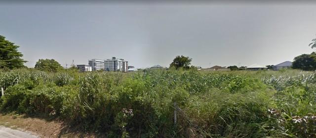 ภาพขายที่ดิน 9 ไร่ ชลบุรี  40 ล้าน