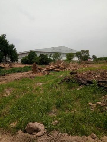 ภาพขายที่ดินซอยวัดเขาดิน สวนเสือศรีราชา 2 แปลงติดกัน