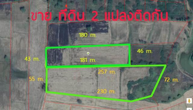 ภาพขายที่ดิน ทำการเกษตร โคราช 2.3 ล้าน มี 2แปลง ด่วน