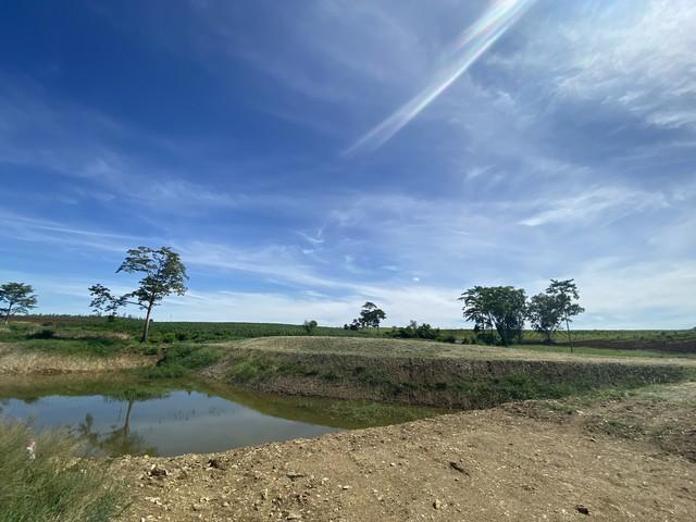 ภาพที่ดินเขาใหญ่สวนเกษตรแบ่งแปลง 120 ตรว.ขึ้นไป