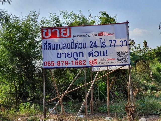 ภาพขายที่ดิน 24-0-77 ไร่ บ้านกล้วย-ไทรน้อย ติดถนน