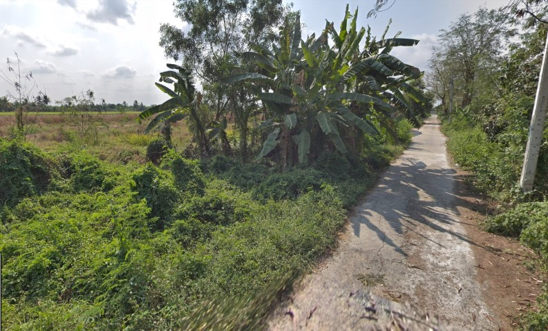 ขายที่ดิน 60 ตารางวา ซอยเลียบคลองสิบสามฝั่งตะวันออก 22 (ซอยบึงตาแรม) เหมาะสร้างบ้าน