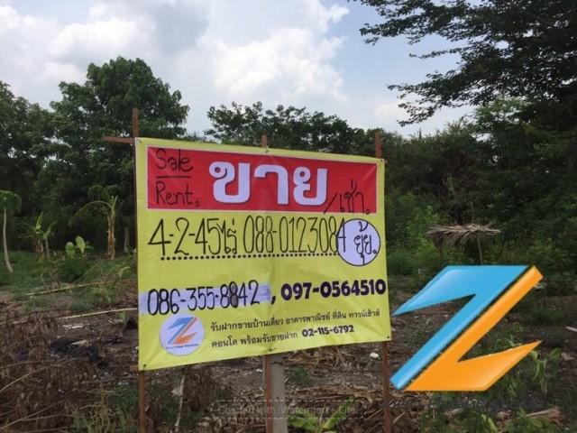 ภาพขายที่ดิน4ไร่ 245 ตรว. ตรงข้ามหมู่บ้านประดับดาว 5-