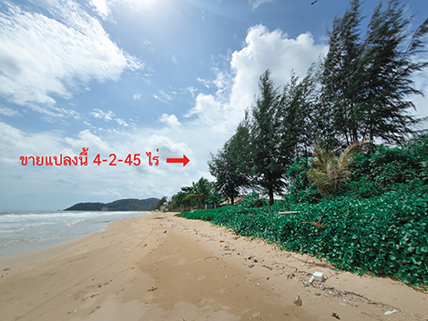 ภาพขายที่ดิน อ.ท่าใหม่ จันทบุรี ต.คลองขุด ติดทะเลแหลมเสด็จ วิวสวยมาก ทำเลดี พื้นที่4-2-45ไร่ ขายตารางวาละ50,000บาท