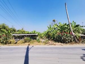 ภาพขายที่ดิน 51-0-75 ไร่ พุทธมณฑลสาย3