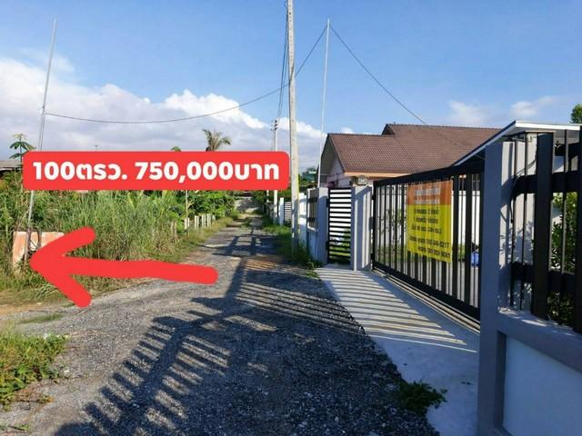 ภาพขายที่ดินเปล่า เหมาะสำหรับสร้างบ้านพักอาศัย