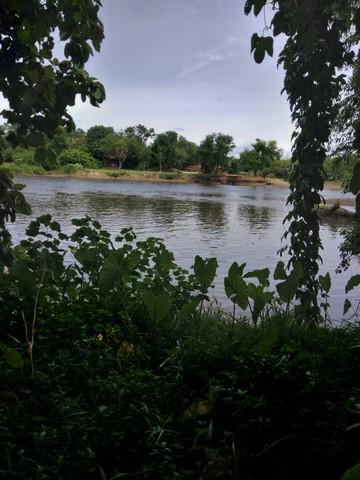 ภาพขายที่ดินแปลงสวย 1-0-73 ไร่ ติดแม่น้ำแควใหญ่