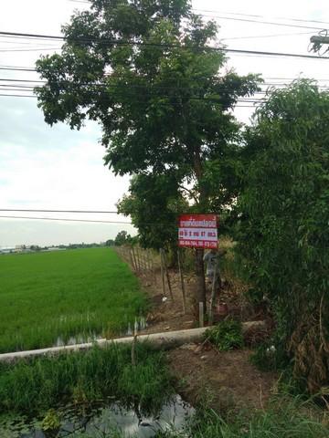 ขายที่ดิน 49-2-67 ไร่ คลองสี่ติดถนน2 ฝั่ง ปทุมธานี
