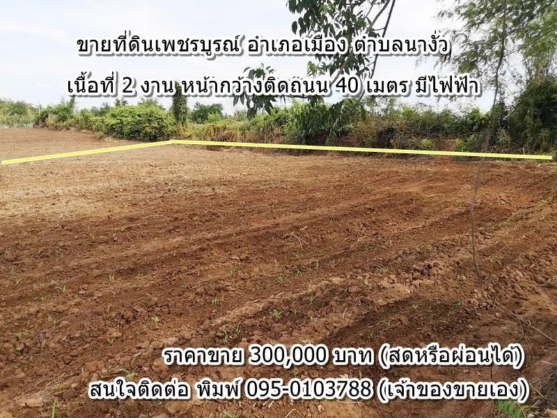 ผ่อนกับเจ้าของได้ ขายด่วน ที่ดินโฉนดเพชรบูรณ์ อำเภอเมือง ตำบลนางั่ว เนื้อที่ 2 งาน หน้ากว้างติดถนนประมาณ 40 เมตร ใกล้ทางขึ้นเขาค้อ เหมาะสร้างบ้านอยู่อาศัย หรือทำเกษตร