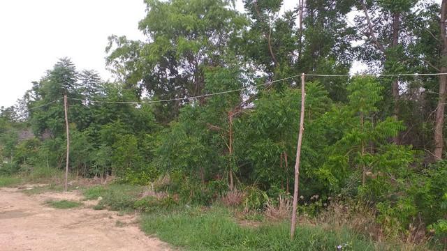 ภาพแนะนำที่ดินพร้อมขาย ใกล้ทางหลวงแผ่นดิน ลพบุรี