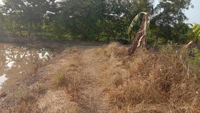 ภาพแนะนำที่ดินพร้อมขาย ที่ดินตำบลบ่อเงิน ปทุมธานี