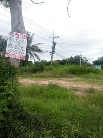 ภาพที่ดินพร้อมบ้าน 5-2-81 ไร่ จ.เพชรบุรี