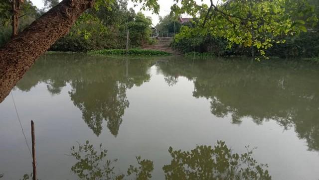 ภาพขายที่พร้อมโอนริมแม่น้ำท่าจีน สุพรรณบุรี