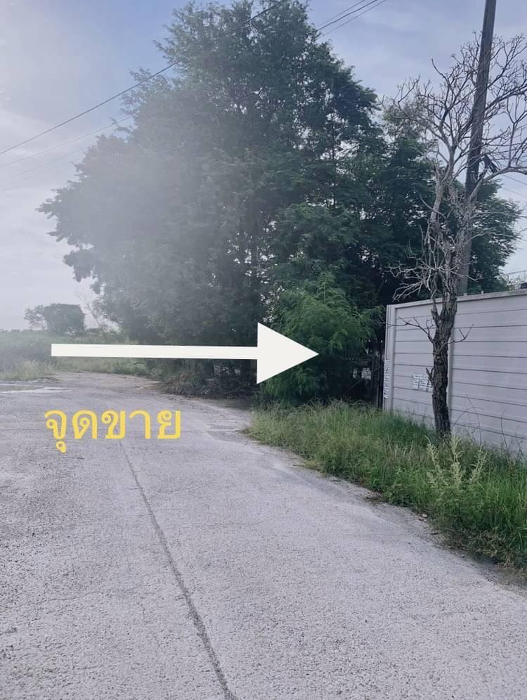 ภาพที่ดินบางนาการ์เด้น ซอย5 ใกล้เอแบค อยู่แหล่งชุมชน