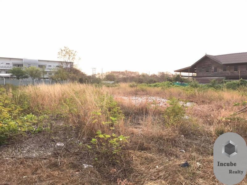 ภาพขายที่ดินชลบุรี 0-1-72.0 ไร่ 4.9 ล้าน