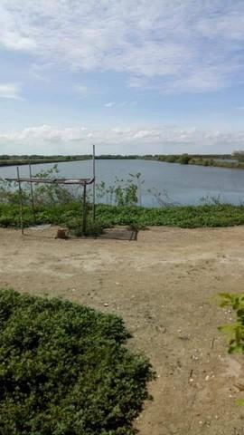 ภาพขายที่บ่อ 28 ไร่ สมุทรสาคร เหมาะเลี้ยงปลา หอยแครง