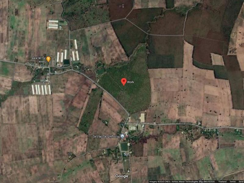ภาพที่ดินทำเกษตร อ.เนินขาม ชัยนาท ประมาณ 155 ไร่