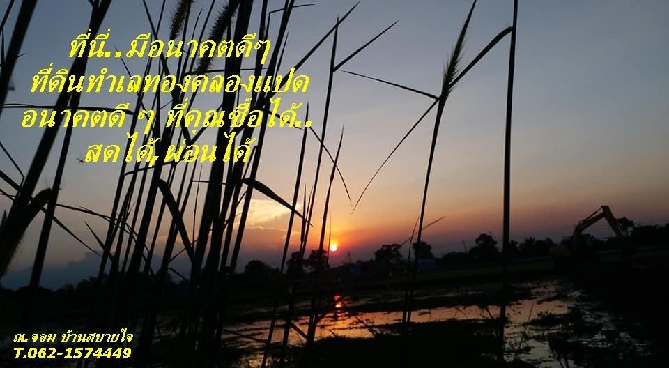 ภาพขายที่ดิน ที่ดิน รังสิต-คลอง 8 ธัญบุรี ปทุมธานี ใกล้ สหการประมูล