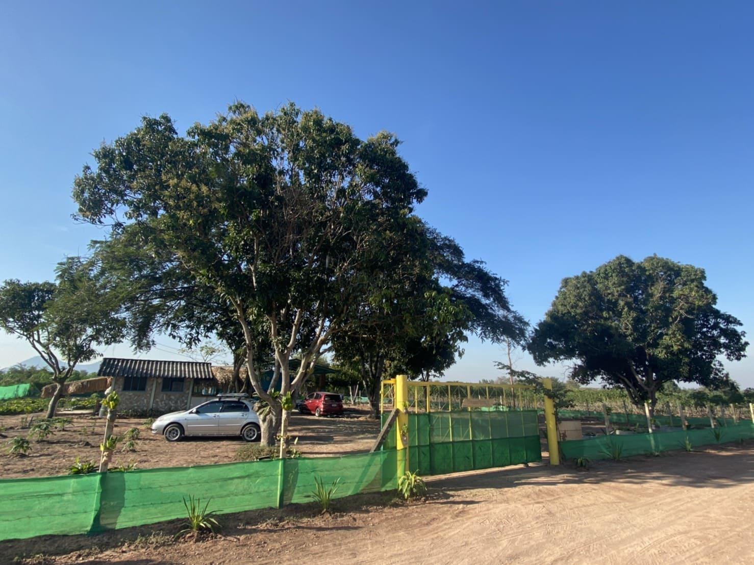 ขายบ้านพร้อมที่ดิน กลอนโด ด่านมะขามเตี้ย กาญจนบุรี