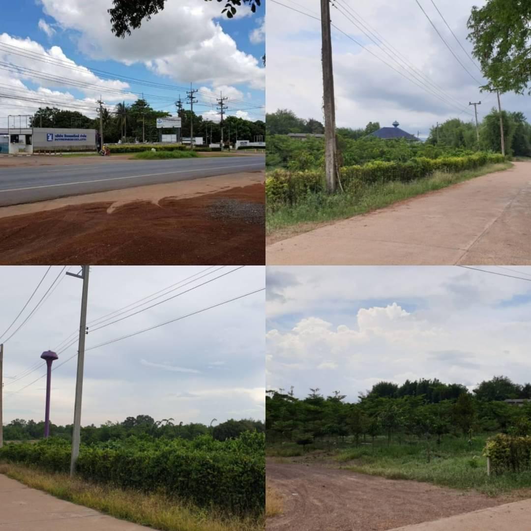 ภาพขายที่ดินสวนทุเรียน 22ไร่ มี500กว่าต้น พร้อมเก็บผลผลิตรายได้ดี จ.ปราจีนบุรี