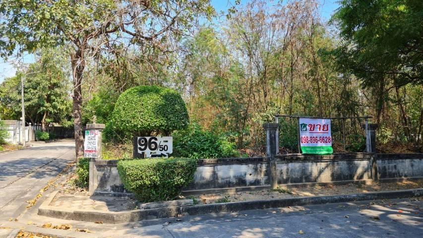 ภาพขายที่ดิน หมู่บ้านร่มรื่นราชพฤกษ์