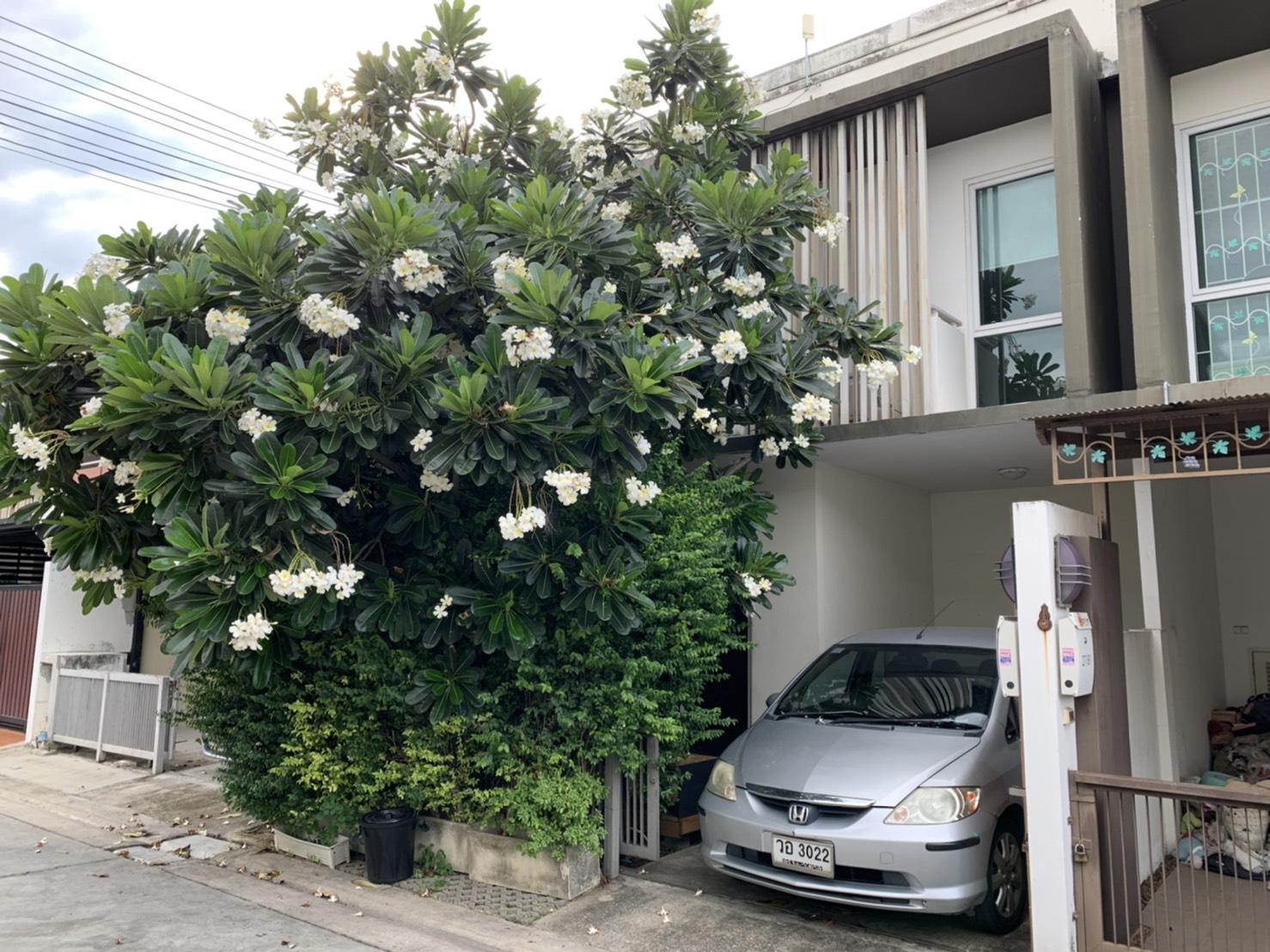 ขายทาวน์เฮ้าส์ 2 ชั้น บ้านสวย สงบร่มรื่น เขตคันนายาว กรุงเทพฯ