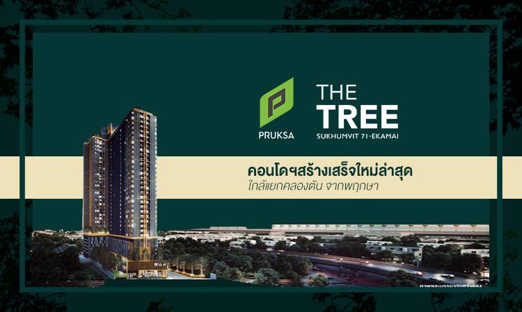 The Tree สุขุมวิท 71-เอกมัย คอนโดฯ สร้างเสร็จใหม่ใกล้แยกคลองตัน พร้อมโปรฯ สุดว้าว ราคาเบาๆ จากพฤกษา