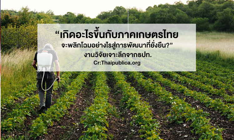 """""""เกิดอะไรขึ้นกับภาคเกษตรไทย จะพลิกโฉมอย่างไรสู่การพัฒนาที่ยั่งยืน?"""" งานวิจัยเจาะลึกจากธปท."""
