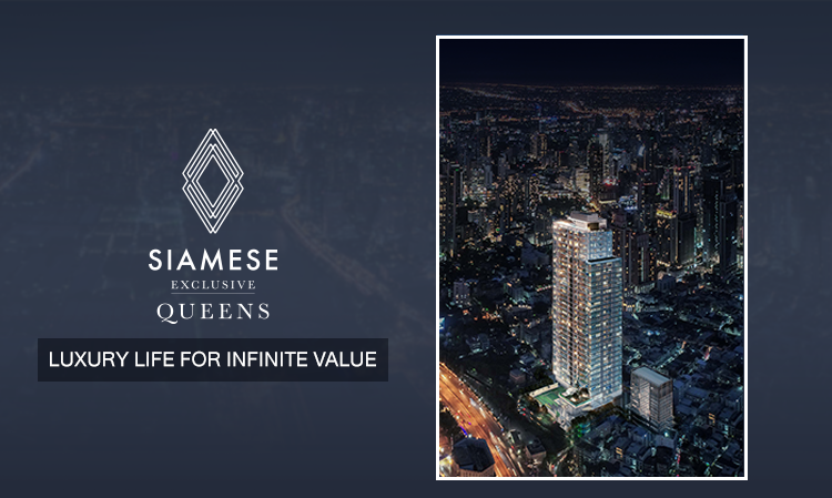 Siamese Exclusive Queens  LUXURY LIFE FOR INFINITE VALUE