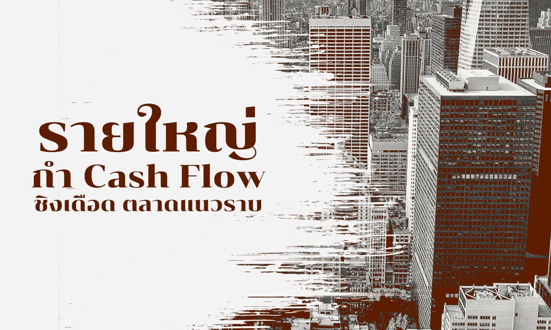 รายใหญ่กำ Cash Flow  ชิงเดือด ตลาดแนวราบ