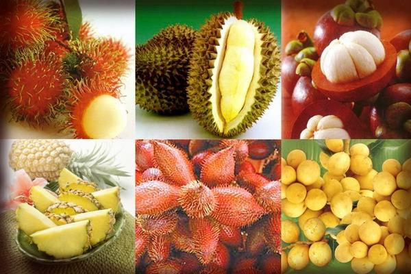 ผลไม้ไทยรันทด! คนแห่กินของนอก แอปเปิ้ล-ส้ม-องุ่นจีนราคาถูกตีตลาดไม่เหลือ