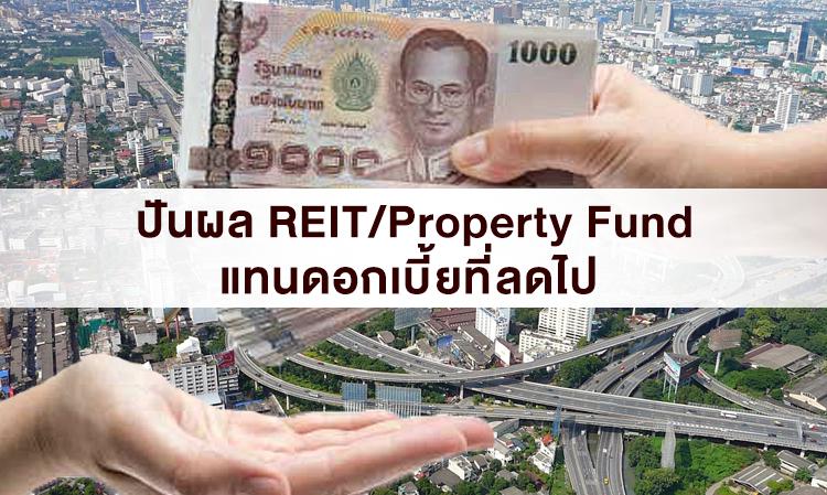 ปันผล REIT/Property Fund แทนดอกเบี้ยที่ลดไป